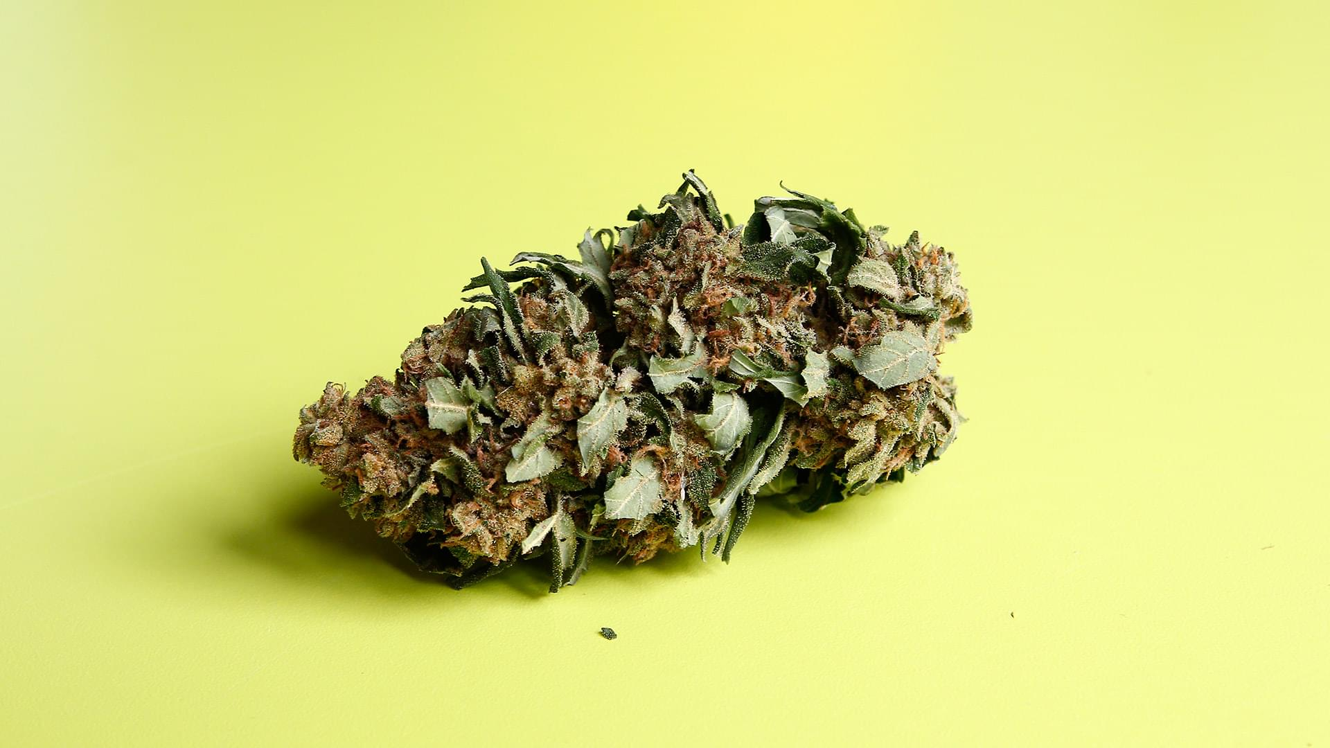 DEA Digs in on Marijuana: How Does the Decision Affect You?