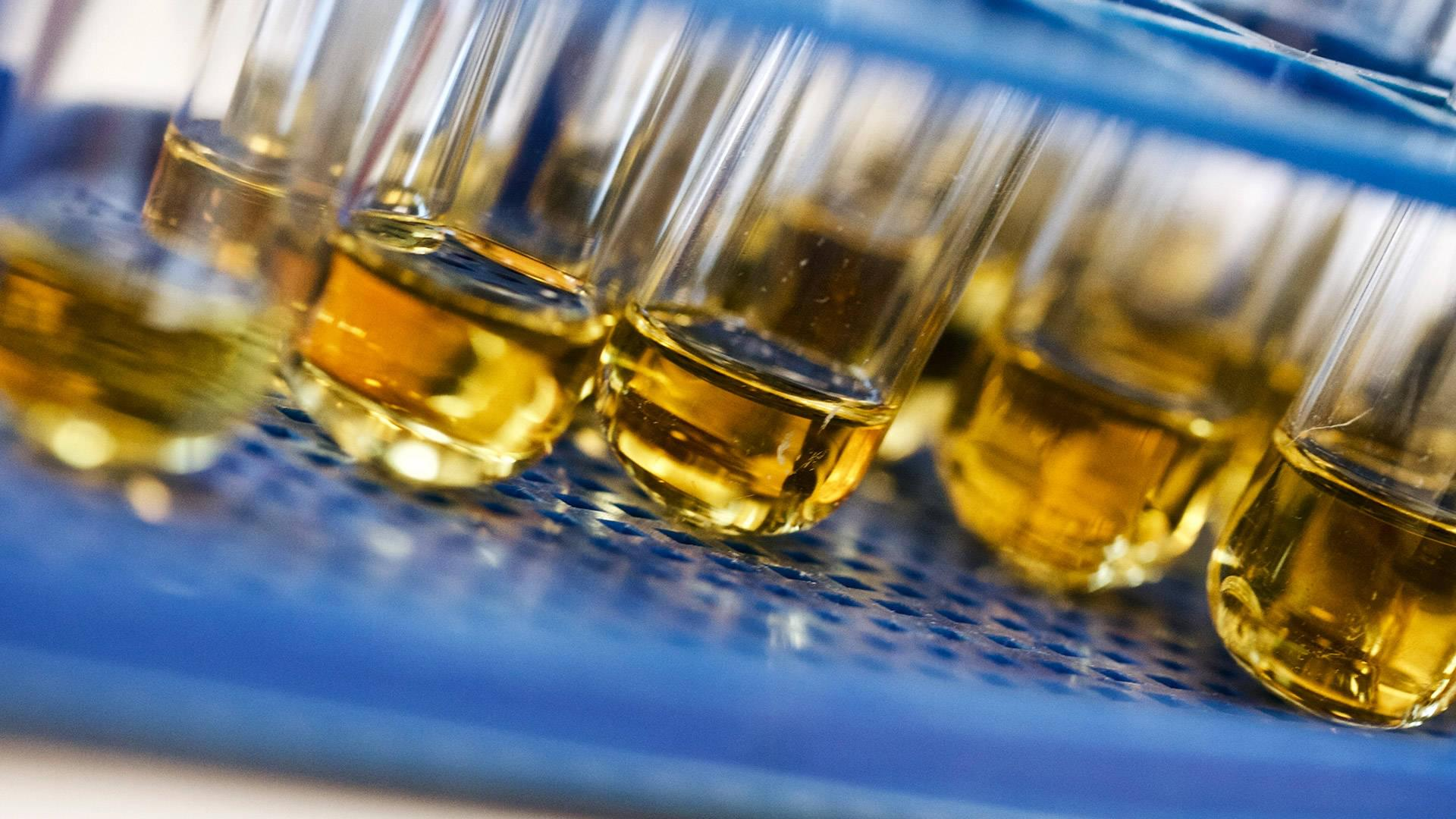 How Employers Can Prevent Drug Test Cheating