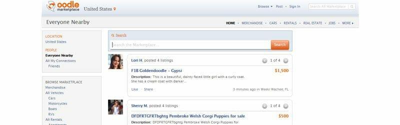 Website screenshot for Oodle